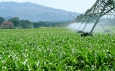 World Bank Investment in Kenya Climate-Smart Agriculture
