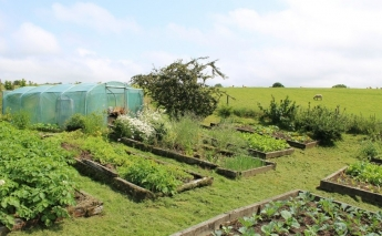The future of permaculture, a sustainable way to grow