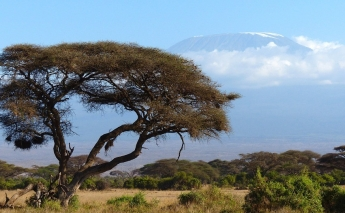"""Win-win"" climate solutions for Ethiopia and Kenya to benefit people and the environment"